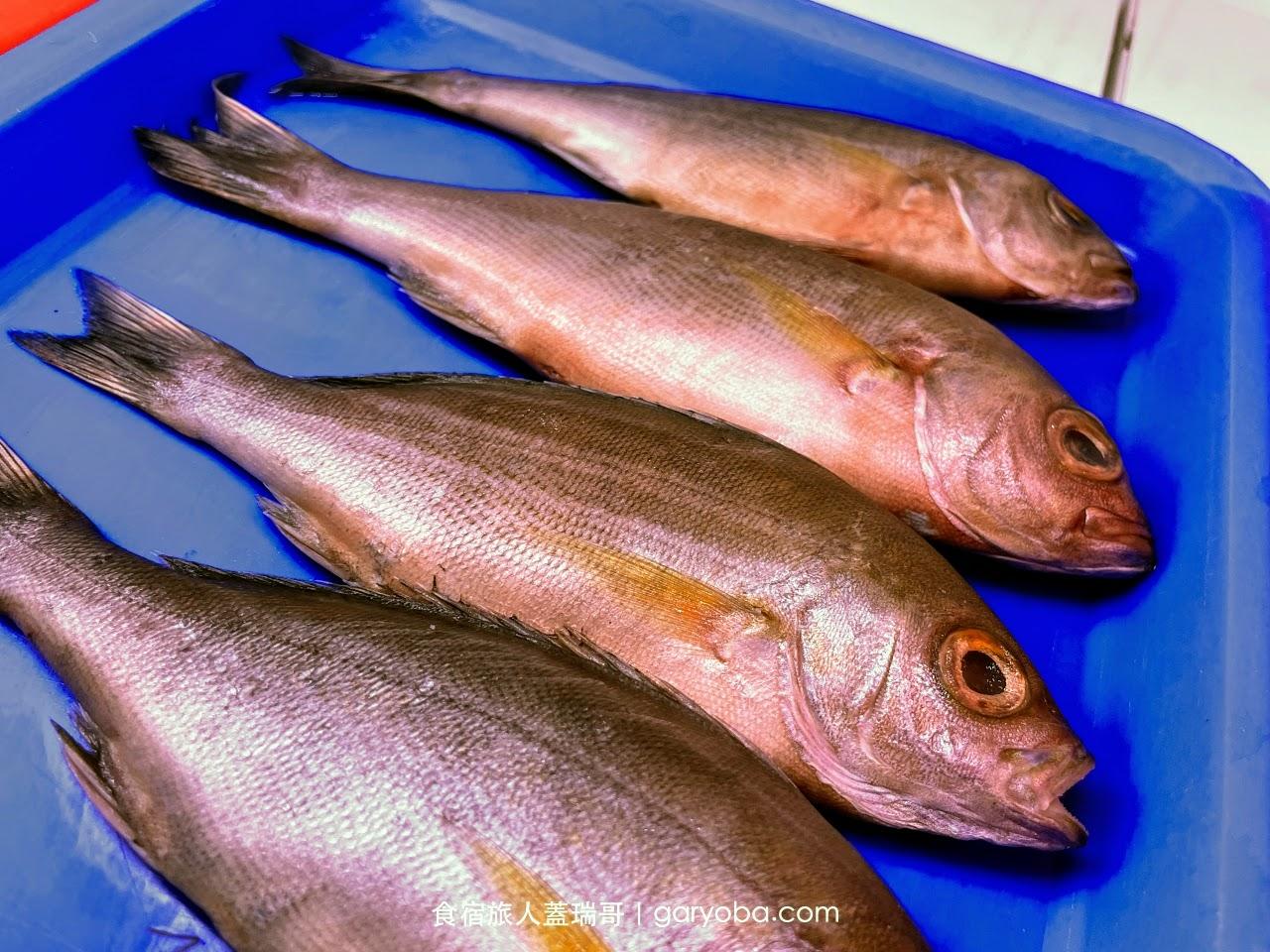 阿香澎湖碳烤。林園海洋溼地公園看倒立水母|499元碳烤海鮮吃到飽
