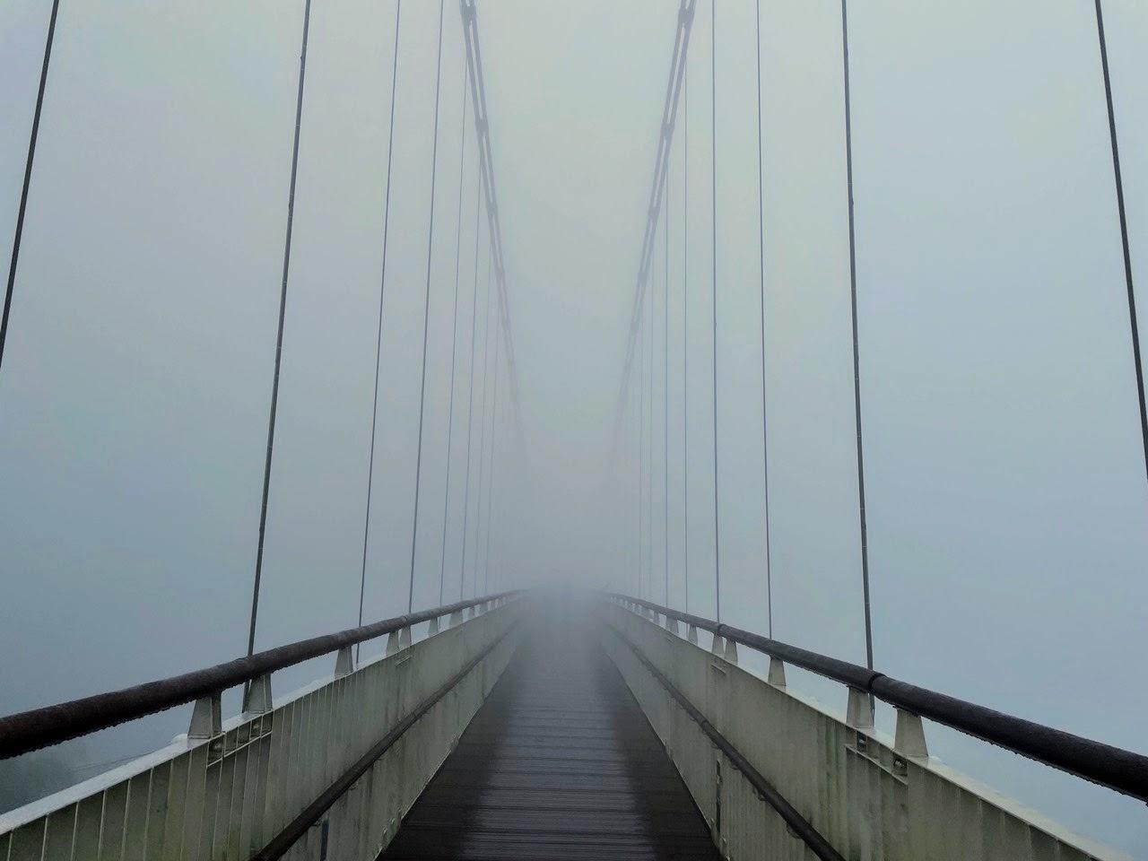 梅山 太平雲梯。雲霧繚繞的高空吊橋|絕美山景盡收眼底